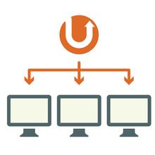 Network / Multisite